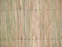Ψάθα ricegrass
